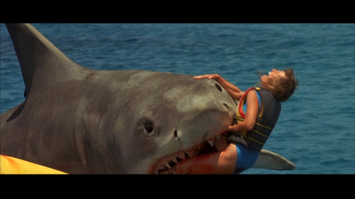 jaws-4-4