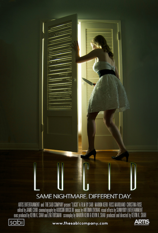 LUCID-Poster-Website