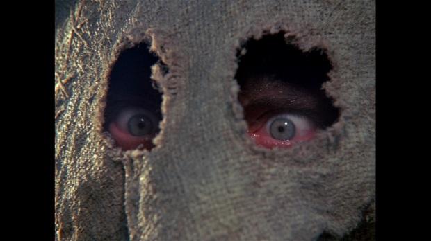 large-dark-night-of-the-scarecrow-blu-ray-movie-1210603218