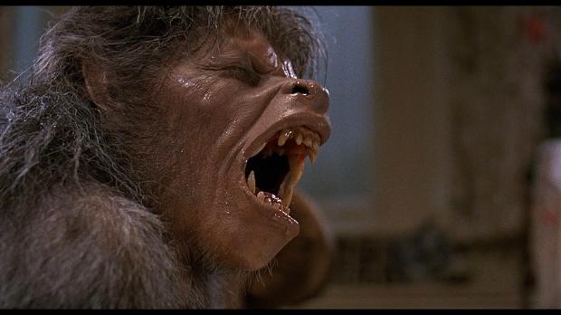 an-american-werewolf-in-london-wolf0