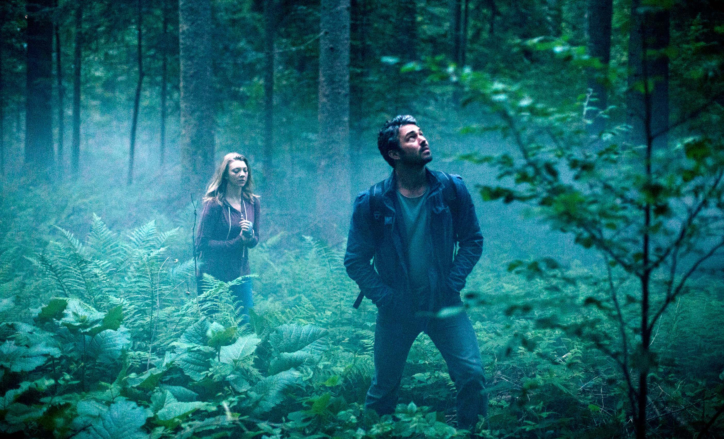 The Forest' is a Mediocre Affair (Review) – Addicted to