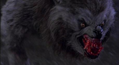 an_american_werewolf_in_london_wolf